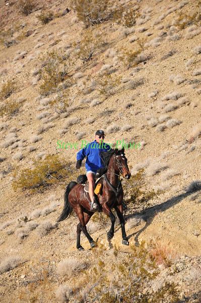 2012 Endurance Rides