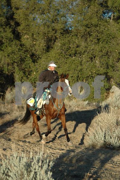 Endurance Rides 2007